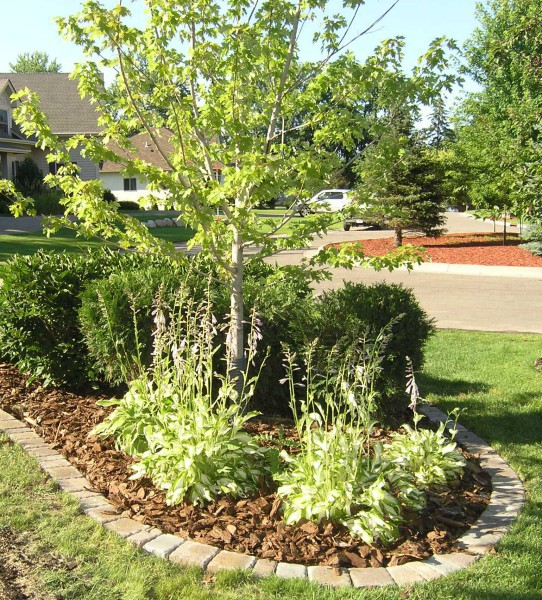 Landscaping With Pavers For Edging : Landscape edging plymouth mn and delano minnesota